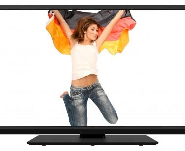 Televizor Toshiba 48L1433DG